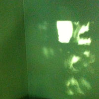light shadow on green wall