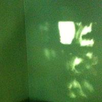 light shadow on green wall
