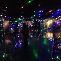 tiny lights like bacteria and microorganisms.