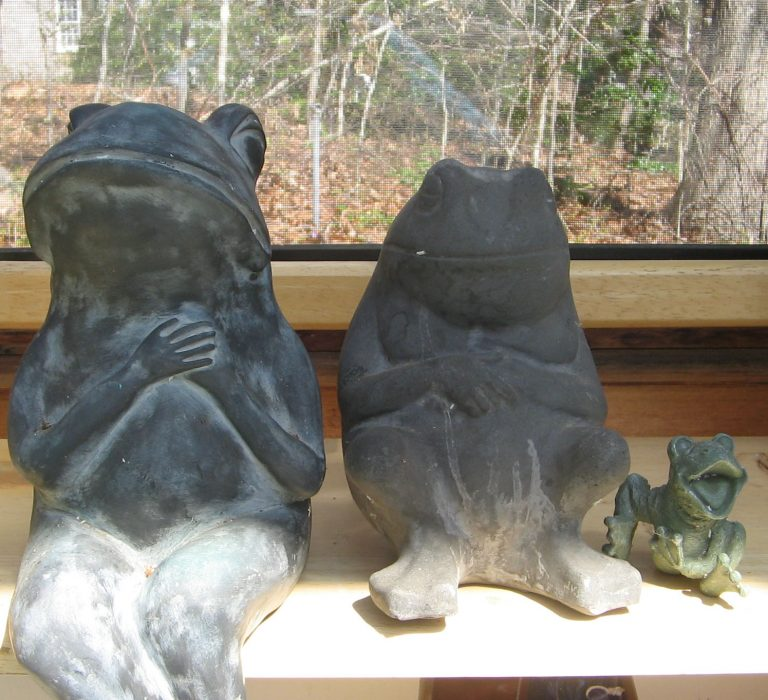 three frogs sitting together